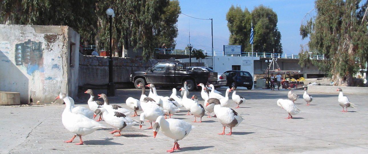 Georgioupolis port